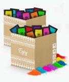Pack de polvos Holi - 480 bolsas de 100 gramos